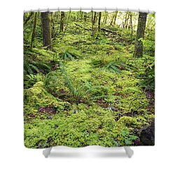 Green Foliage On The Forest Floor Shower Curtain by Craig Tuttle