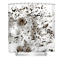 Shower Curtain featuring the painting Grey Moss Abstract by Frank Tschakert