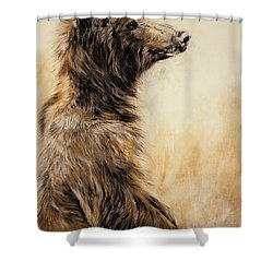 Grizzly Bear 2 Shower Curtain by Odile Kidd
