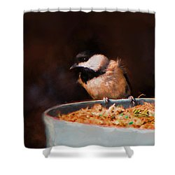 Hanging On The Edge Shower Curtain by Jai Johnson