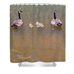 Happy Lake Family Shower Curtain by James BO Insogna