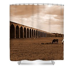 Harringworth Viaduct And Horses Grazing Shower Curtain by Louise Heusinkveld