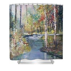 Hartman Creek Birches Shower Curtain by Ryan Radke