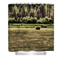Hay Harvest Shower Curtain by David Patterson