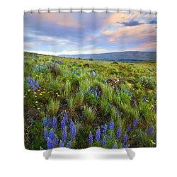 High Desert Spring Shower Curtain by Mike  Dawson