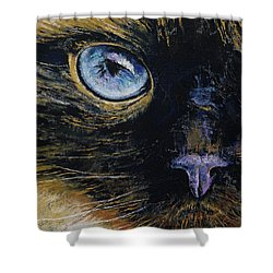 Burmese Cat Shower Curtain by Michael Creese