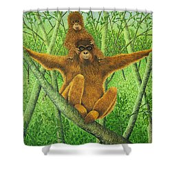 Hnag On In There Shower Curtain by Pat Scott