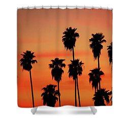 Hollywood Sunset Shower Curtain by Mariola Bitner
