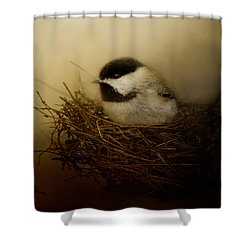 Home Tweet Home Shower Curtain by Jai Johnson