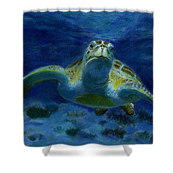 Honaunau Honu Shower Curtain by Michele Ross