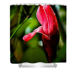 Horned Blossom Shower Curtain by Christopher Holmes