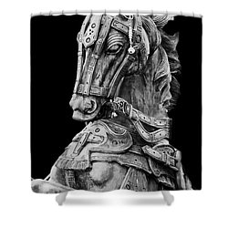 Horse  Shower Curtain by Charuhas Images