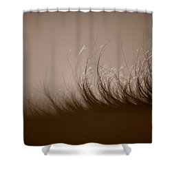 Horses Mane Shower Curtain by Steve Gadomski