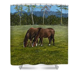 Horses Of Romance Shower Curtain by Mary Ann King