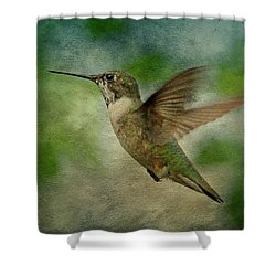 Hummingbird In Flight II Shower Curtain by Sandy Keeton