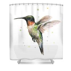 Hummingbird Shower Curtain by Olga Shvartsur