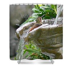 Hummingbirds Do Take Baths Shower Curtain by Jennie Marie Schell