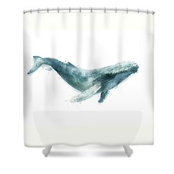 Humpback Whale From Whales Chart Shower Curtain by Amy Hamilton