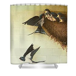 Hungry Mouths Shower Curtain by Pat Scott