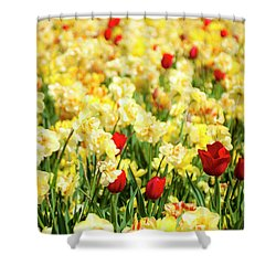 I Am Here Shower Curtain by Tamyra Ayles
