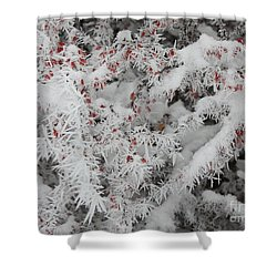 I Love Winter Shower Curtain by Carol Groenen