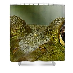 I See You Shower Curtain by Michael Peychich