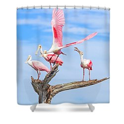 If You Had Wings Shower Curtain by Mark Andrew Thomas