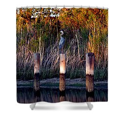 Illusion Shower Curtain by Clayton Bruster