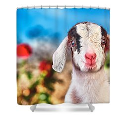 I'm In The Rose Garden Shower Curtain by TC Morgan