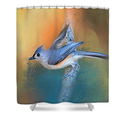 In A Flash Shower Curtain by Jai Johnson