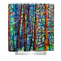 In A Pine Forest Shower Curtain by Mandy Budan