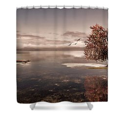 In Dreams Shower Curtain by Lourry Legarde