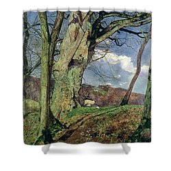 In Early Spring Shower Curtain by John William Inchbold