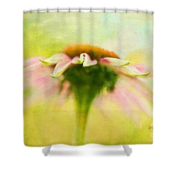 In Perfect Harmony Shower Curtain by Lois Bryan