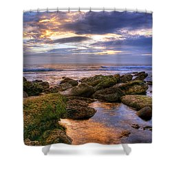 In The Morning Shower Curtain by Svetlana Sewell