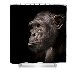 Indignant Shower Curtain by Paul Neville