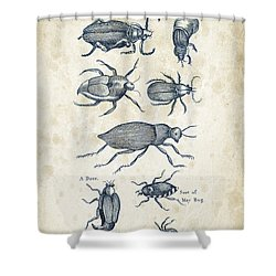 Insects - 1792 - 02 Shower Curtain by Aged Pixel