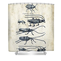Insects - 1792 - 03 Shower Curtain by Aged Pixel