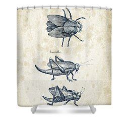 Insects - 1792 - 08 Shower Curtain by Aged Pixel