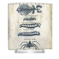 Insects - 1792 - 17 Shower Curtain by Aged Pixel