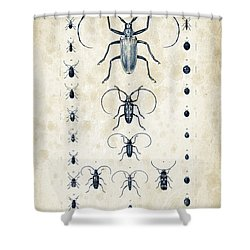 Insects - 1832 - 08 Shower Curtain by Aged Pixel