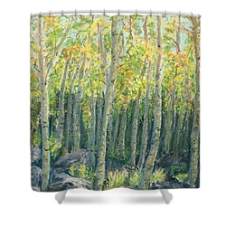 Into The Aspens Shower Curtain by Mary Benke