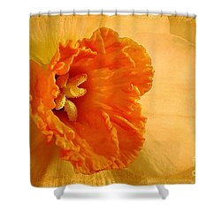 Inviting Shower Curtain by Lois Bryan