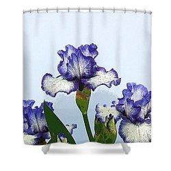 Iris 15 Shower Curtain by Allen Beatty