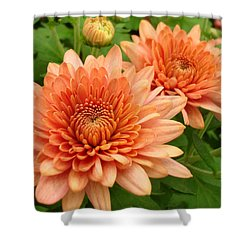 It Is Spring Shower Curtain by Kathy Bucari
