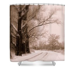 Just Around The Bend  Shower Curtain by Carol Groenen