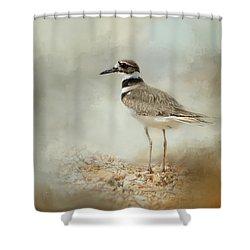 Killdeer On The Rocks Shower Curtain by Jai Johnson