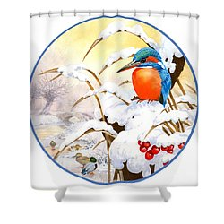 Kingfisher Plate Shower Curtain by John Francis
