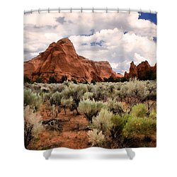 Kodachrome Sage Shower Curtain by Lana Trussell