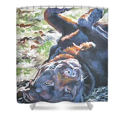 Labrador Retriever Chocolate Fun Shower Curtain by Lee Ann Shepard